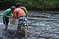 Yancey County students check their net for insects (9897204795).jpg