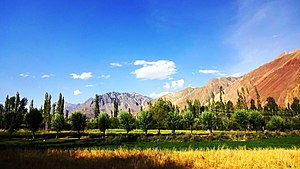 Yasin Valley - Yasin Valley in Summer