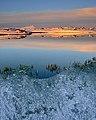 Yellow North Iceland (51115538).jpeg
