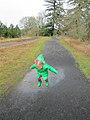 Young puddle stomper (6778222119).jpg