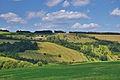 Zemědělské družstvo Strání, okres Uherské Hradiště.jpg