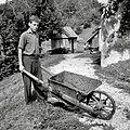 """""""Ladarfar"""" (samokolnica) za gnoj, Zadlog 1959.jpg"""