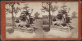 'Hollywood,' Long Branch, from Robert N. Dennis collection of stereoscopic views 8.png