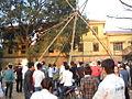 Đánh đu - hội Lim, Bắc Ninh.JPG