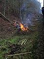 Žloukovice, pálení klestí u trati.jpg