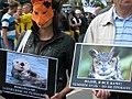 Акція проти джипінгу, 2011.jpg