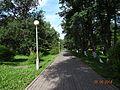 Аллея - panoramio (78).jpg