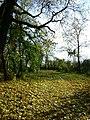 Барский сад в Горожанке осенью.JPG