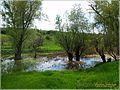 Весенние плавни - panoramio.jpg