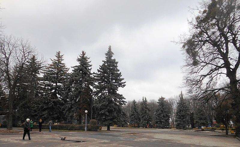 File:Вінниця , Центральний парк культури і відпочинку.jpg