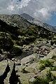 Национален парк Пирин - NP01 - локация Бандеришки езера-река Глазне No10.jpg