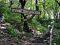 Начало тропы к водопаду Чудо-Красотка.jpg