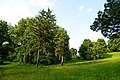 Парк Мала Софіївка, Лука-Мелешківська P1400435.jpg