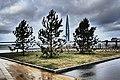 Санкт-Петербург. Крестовский остров. Вид на залив.jpg