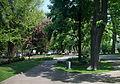 Сквер на площі Соборній.jpg