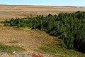 Урочище Жанатаускен. Вид в восточном направлении - panoramio.jpg