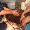 عملية استخلاص زيت الأرغان من عجينة بذور الأرغان.jpg