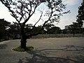 中島航空金属専用線と軍用軽便鉄道の結節点(西北西向き) - Panoramio 39906078.jpg