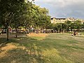 台北市文山區興隆公園-園內大草坪2.jpg
