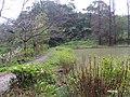 擔水窩濕地農場 Danshuiwo Wetland Farm - panoramio (1).jpg