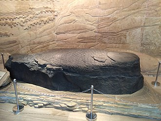 Baiheliang Underwater Museum - A Qing dynasty carved fish (not one of the original Tang dynasty carvings), previously placed on White Crane Ridge, and now displayed in the museum.