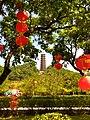 红花山 3.jpg