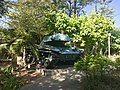 荷婆崙霖肇宮的M41輕型坦克.jpg