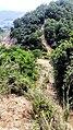 虎门皇帝山20130519 - panoramio (6).jpg