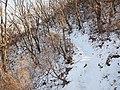 雪满山径 - Trail Covered by Snow - 2012.03 - panoramio.jpg