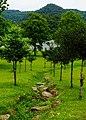 龍潭湖風景區 Longtan Lake Scenic Area - panoramio.jpg
