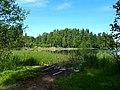 0011. Pargolovo. Finnish lake.jpg