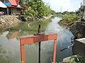 01873jfPinagbarilan Cantulinan Irrigation Baliuag Bulacan Dikes Roadfvf 12.JPG