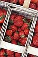 020180505 104643 Korb mit Erdbeeren.jpg
