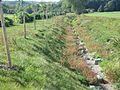 09 Hungersee - Breitunger Bach, trockener Abschnitt.jpg