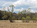 12-04-21-wildparkstrasze-ebw-by-RalfR-14.jpg