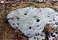 141569 Stein med skålgroper på Stølshaugen fra RA p1030866-jpg.jpg