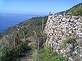 19017 Riomaggiore, Province of La Spezia, Italy - panoramio (12).jpg
