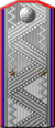 Генерал-лейтенант кавалерии