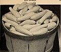 1936 wholesale catalogue (1936) (16047947624).jpg