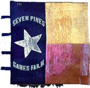 1st Texas Infantry - 1st Texas Infantry Regiment flag