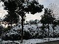 2010年12月15日夜里的那场雪 - panoramio (18).jpg