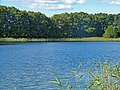 2015-09-28 Rochowsee 017.jpg