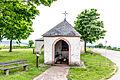 20150523 Speiner Bildchen Irsch IMG 4566 by sebaso.jpg