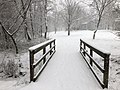 2018-03-21 08 44 06 View along a snow-covered walking path as it crosses a bridge in the Franklin Farm section of Oak Hill, Fairfax County, Virginia.jpg