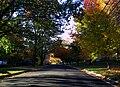 2988b - Greenbelt - Greenhill Rd.JPG