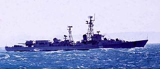 Kildin-class destroyer