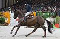 54eme CHI de Genève - 20141213 - Coupe de Genève - Jerome Hurel et Quartz Rouge 4.jpg