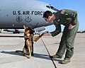 54th ARS instructor pilot helps recover missing Oklahoma boy's body 110615-F-CM321-085.jpg