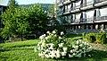 5720 Ribaritsa, Bulgaria - panoramio (27).jpg