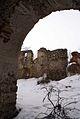 635viki Ruiny zamku w Pankowie. Foto Barbara Maliszewska.jpg